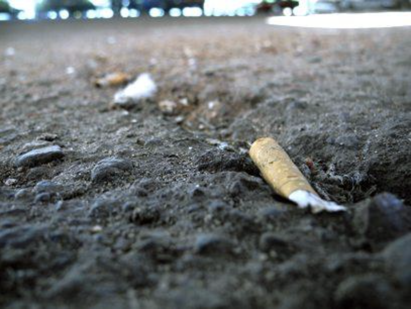 cigarette butts on beach