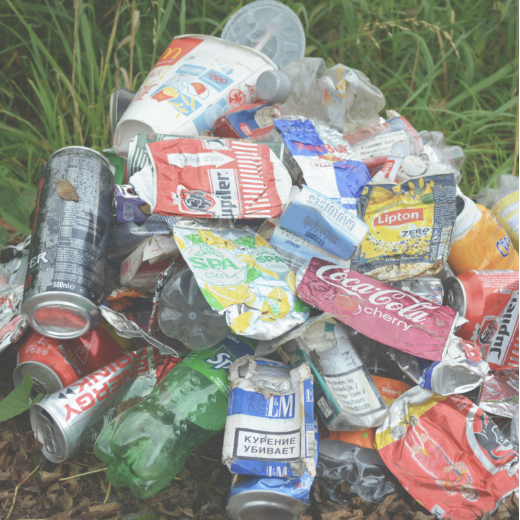 The litter problem